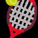 テニス栄養のはじまり